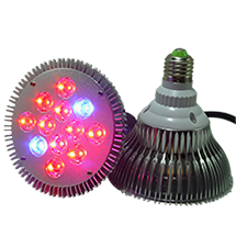LED-Wachstumslampen, copyright PolyTrade GesmbH, alle Rechte vorbehalten